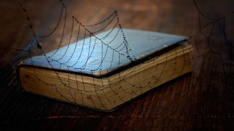 book_old_book_used_worn_wood_wood_floor_cobweb_close-878873-1